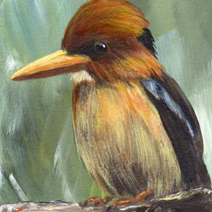 Art: Yellow Billed Kingfisher ACEO by Artist Janet M Graham