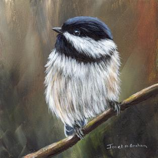 Art: Black Capped Chickadee No 5 by Artist Janet M Graham