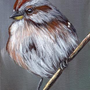 Art: American Tree Sparrow ACEO by Artist Janet M Graham