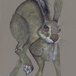 Art: HARE IN A HURRY! h3315 by Artist Dawn Barker