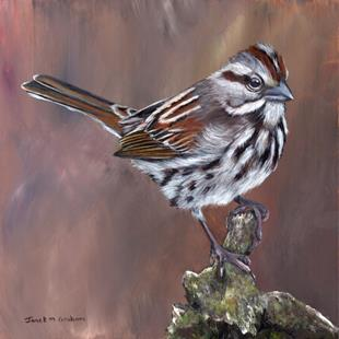 Art: Song Sparrow by Artist Janet M Graham