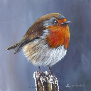 Art: Robin No 13 by Artist Janet M Graham