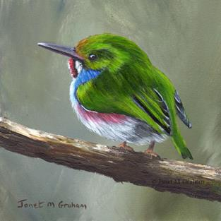 Art: Cuban Tody No 2 by Artist Janet M Graham