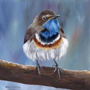 Art: Bluethroat by Artist Janet M Graham