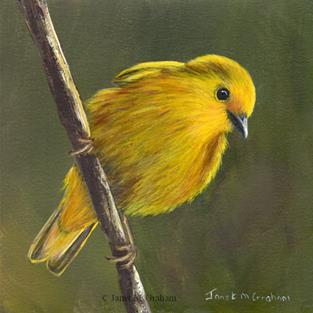 Art: Yellow Warbler No 3 by Artist Janet M Graham