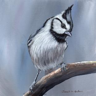 Art: Bridled Titmouse by Artist Janet M Graham