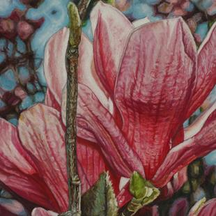 Art: Magnolias in Astoria by Artist Melissa Tobia