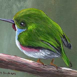 Art: Cuban Tody ACEO by Artist Janet M Graham