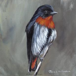 Art: Mistletoebird by Artist Janet M Graham
