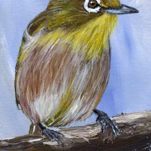 Art: Japanese White Eye ACEO by Artist Janet M Graham