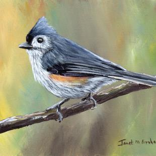 Art: Tufted Titmouse No 11 by Artist Janet M Graham
