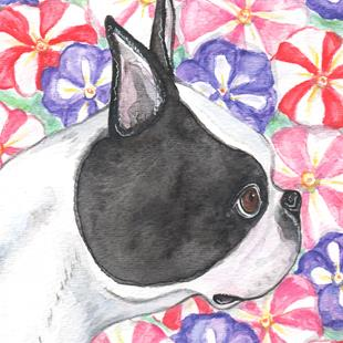 Art: Boston Terrier and Petunias by Artist Melinda Dalke