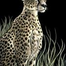 Art: Cheetah  (SOLD) by Artist Monique Morin Matson