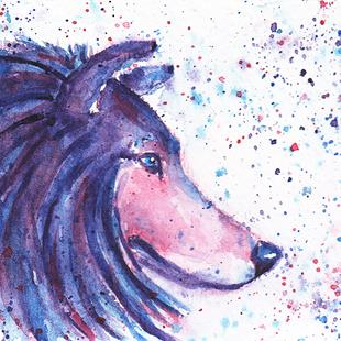 Art: ACEO Colors Collie 1.jpg by Artist Melinda Dalke