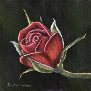 Art: Red Rose 2 by Artist Janet M Graham
