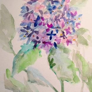 Art: Hydrangea by Artist Delilah Smith