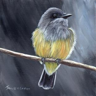 Art: Cassin's Kingbird by Artist Janet M Graham