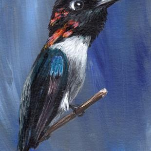 Art: Bee Hummingbird ACEO by Artist Janet M Graham