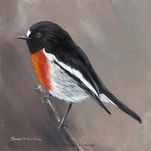 Art: Scarlet Robin No 6 by Artist Janet M Graham