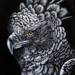 Art: Harpy Eagle  (SOLD) by Artist Monique Morin Matson