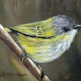 Art: Green Shrike Babbler ACEO by Artist Janet M Graham