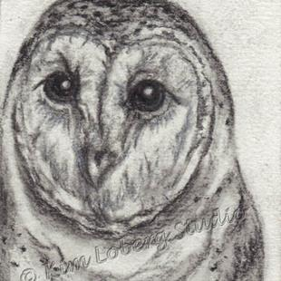 Art: Charcoal Barn Owl by Artist Kim Loberg