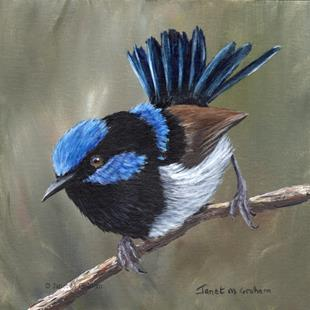 Art: Superb Fairy Wren No 12 by Artist Janet M Graham