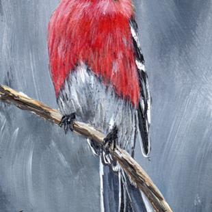 Art: Pine Grosbeak ACEO by Artist Janet M Graham