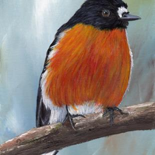 Art: Flame Robin No 3 by Artist Janet M Graham