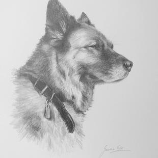 Art: The Dog by Artist Ewa Kienko Gawlik