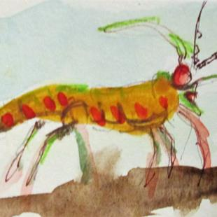 Art: Shrimp Aceo by Artist Delilah Smith
