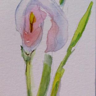 Art: Calla Lily Aceo by Artist Delilah Smith