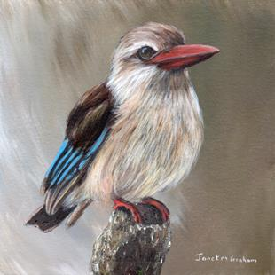Art: Brown Hooded Kingfisher by Artist Janet M Graham