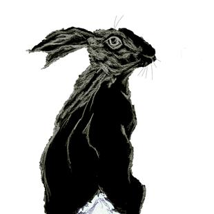 Art: MONOCHROME HARE hp003 by Artist Dawn Barker
