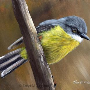 Art: Eastern Yellow Robin No 4 by Artist Janet M Graham