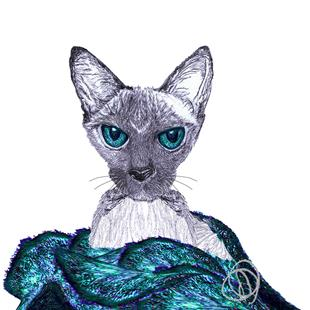 Art: SNUGGLING SIAMESE CAT c331 by Artist Dawn Barker