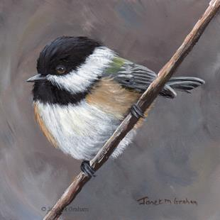 Art: Black Capped Chickade No 10 by Artist Janet M Graham