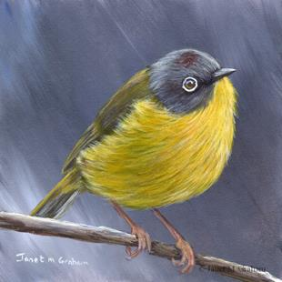 Art: Nashville Warbler No 2 by Artist Janet M Graham