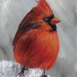 Art: Winter Cardinal ACEO by Artist Janet M Graham
