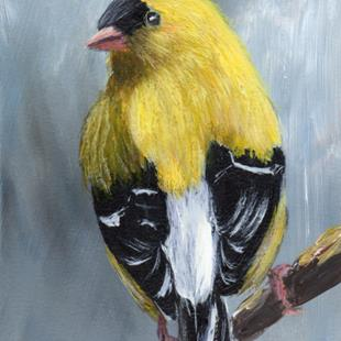 Art: American Goldfinch ACEO by Artist Janet M Graham