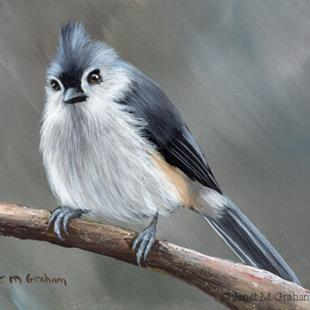 Art: Tufted Titmouse No 15 by Artist Janet M Graham