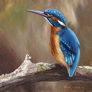 Art: Kingfisher No 3 by Artist Janet M Graham