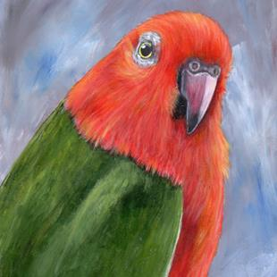 Art: King Parrot by Artist Janet M Graham