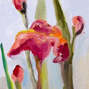 Art: Pink Iris by Artist Delilah Smith