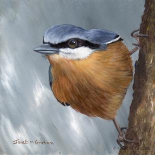 Art: Nuthatch No 4 by Artist Janet M Graham