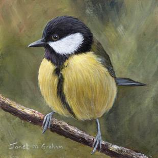 Art: Great Tit No 4 by Artist Janet M Graham