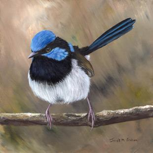 Art: Superb Fairy Wren No 23 by Artist Janet M Graham