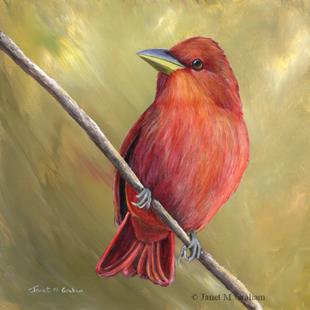 Art: Summer Tanager No 2 by Artist Janet M Graham