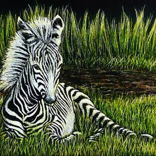 Art: Zebra Foal by Artist Monique Morin Matson