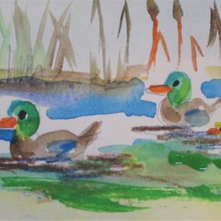 Art: Aceo Mallards on a Pond by Artist Delilah Smith